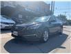 2015 Hyundai Sonata  (Stk: 155195) in Scarborough - Image 1 of 17