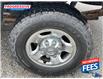 2011 Dodge Ram 2500  (Stk: BG584257) in Sarnia - Image 9 of 18