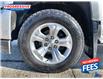 2017 Chevrolet Silverado 1500  (Stk: HG483049) in Sarnia - Image 10 of 26