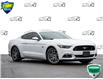 2016 Ford Mustang GT Premium (Stk: 50-51) in St. Catharines - Image 1 of 28