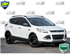 2016 Ford Escape SE (Stk: 40-34) in St. Catharines - Image 1 of 27