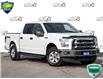 2016 Ford F-150 XLT (Stk: 80-20X) in St. Catharines - Image 1 of 26
