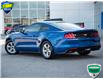 2018 Ford Mustang EcoBoost (Stk: 80-228) in St. Catharines - Image 3 of 25
