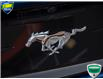 2018 Ford Mustang EcoBoost (Stk: 80-228) in St. Catharines - Image 11 of 25
