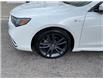 2019 Acura TLX Tech A-Spec (Stk: 1922830) in Hamilton - Image 2 of 15