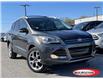 2016 Ford Escape Titanium (Stk: 0294PT) in Midland - Image 1 of 16