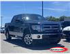 2013 Ford F-150 XLT (Stk: 21T60A) in Midland - Image 1 of 12