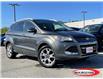 2016 Ford Escape Titanium (Stk: 0313PT) in Midland - Image 1 of 17