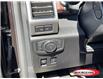 2018 Ford F-150 Platinum (Stk: 0388PT) in Midland - Image 5 of 14