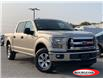 2017 Ford F-150 XLT (Stk: 0146PT) in Midland - Image 1 of 14