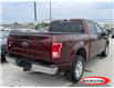 2017 Ford F-150 XLT (Stk: 21T346A) in Midland - Image 4 of 7