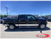 2013 Ford F-150 XLT (Stk: 21T60A) in Midland - Image 2 of 12