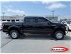2018 Ford F-150 XLT (Stk: 21T412A) in Midland - Image 2 of 9