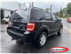 2010 Ford Escape XLT Automatic (Stk: 21136AAB) in Parry Sound - Image 3 of 14