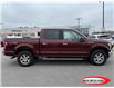 2016 Ford F-150  (Stk: 0401PT) in Midland - Image 2 of 12