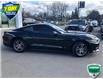2015 Ford Mustang EcoBoost Premium (Stk: 00H1235) in Hamilton - Image 9 of 19