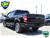 2018 Ford F-150 XLT (Stk: 00H1325) in Hamilton - Image 6 of 20
