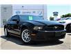 2014 Ford Mustang V6 Premium (Stk: 00H1335) in Hamilton - Image 1 of 20
