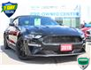 2019 Ford Mustang EcoBoost Premium (Stk: 00H1381) in Hamilton - Image 7 of 25