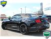 2019 Ford Mustang EcoBoost Premium (Stk: 00H1381) in Hamilton - Image 8 of 25