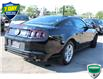 2014 Ford Mustang V6 Premium (Stk: A210553) in Hamilton - Image 6 of 22