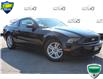 2014 Ford Mustang V6 Premium (Stk: A210553) in Hamilton - Image 1 of 22