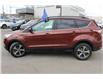 2018 Ford Escape SEL (Stk: 00H1451) in Hamilton - Image 3 of 21