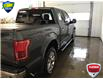 2017 Ford F-150 Lariat (Stk: FB3981) in Sault Ste. Marie - Image 13 of 30
