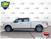 2019 Ford F-150 XLT (Stk: 94341) in Sault Ste. Marie - Image 3 of 24