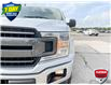 2019 Ford F-150 XLT (Stk: 94341) in Sault Ste. Marie - Image 8 of 24