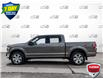 2019 Ford F-150 XLT (Stk: FD131A) in Sault Ste. Marie - Image 3 of 25