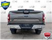 2019 Ford F-150 XLT (Stk: FD131A) in Sault Ste. Marie - Image 5 of 25