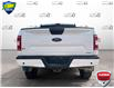 2019 Ford F-150 XLT (Stk: FD172A) in Sault Ste. Marie - Image 5 of 24
