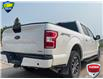 2019 Ford F-150 XLT (Stk: FD172A) in Sault Ste. Marie - Image 10 of 24