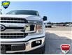 2018 Ford F-150 XLT (Stk: FD129A) in Sault Ste. Marie - Image 8 of 25