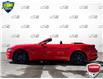 2019 Ford Mustang GT Premium (Stk: 94413) in Sault Ste. Marie - Image 3 of 17
