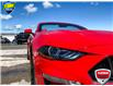 2019 Ford Mustang GT Premium (Stk: 94413) in Sault Ste. Marie - Image 6 of 17