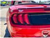 2019 Ford Mustang GT Premium (Stk: 94413) in Sault Ste. Marie - Image 8 of 17