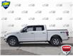 2020 Ford F-150 XLT (Stk: XD297A) in Sault Ste. Marie - Image 3 of 21