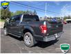 2017 Ford F-150 XLT (Stk: FC0281) in Sault Ste. Marie - Image 8 of 12
