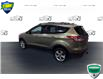 2013 Ford Escape SE (Stk: FC428A) in Sault Ste. Marie - Image 5 of 12