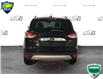 2014 Ford Escape SE (Stk: XC277A) in Sault Ste. Marie - Image 3 of 16