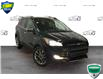 2014 Ford Escape SE (Stk: XC277A) in Sault Ste. Marie - Image 1 of 16