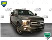 2018 Ford F-150 XLT (Stk: FD080AX) in Sault Ste. Marie - Image 1 of 28