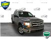2014 Ford F-150 XLT (Stk: FD128A) in Sault Ste. Marie - Image 4 of 20