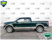 2012 Ford F-150 Lariat (Stk: RD176A) in Sault Ste. Marie - Image 3 of 25