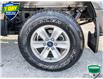 2018 Ford F-150 XLT (Stk: RC459A) in Sault Ste. Marie - Image 6 of 24