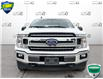 2019 Ford F-150 XLT (Stk: FD166A) in Sault Ste. Marie - Image 2 of 24