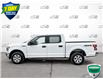 2019 Ford F-150 XLT (Stk: FD166A) in Sault Ste. Marie - Image 3 of 24