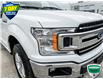 2019 Ford F-150 XLT (Stk: FD166A) in Sault Ste. Marie - Image 8 of 24